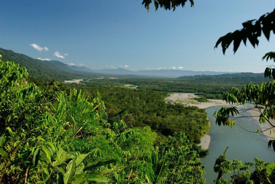 Parc national del manu (3)
